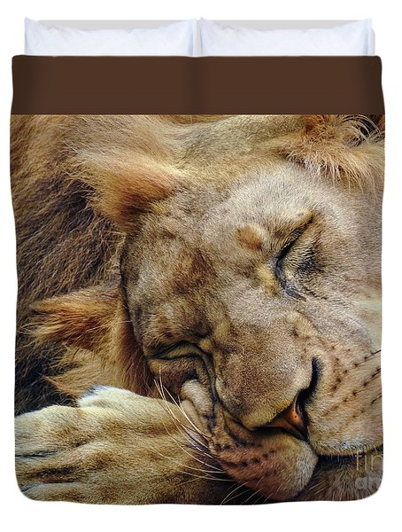 Napping Duvet Cover by Lisa L Silva