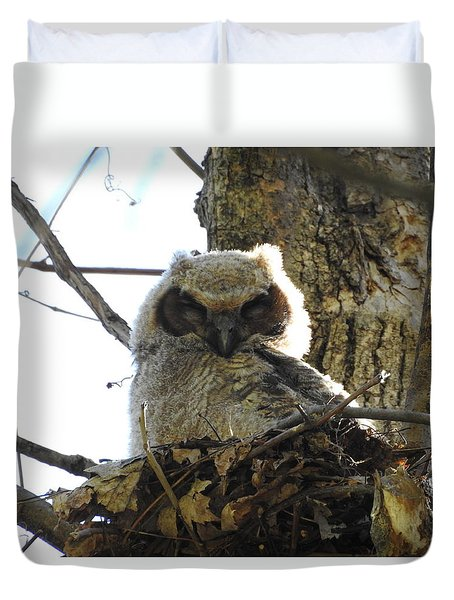 Napping Owl Duvet Cover