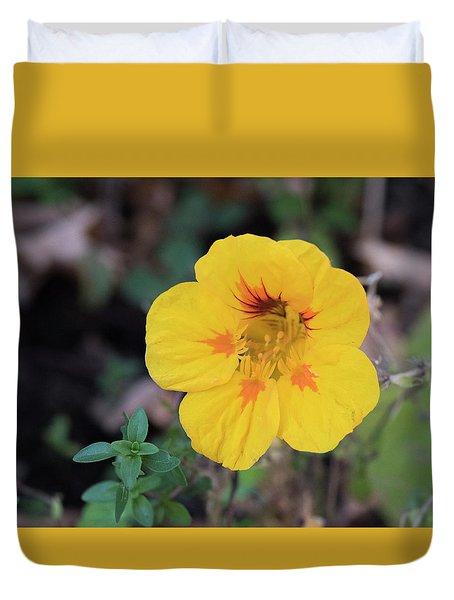 Nasturtium And Thyme Duvet Cover