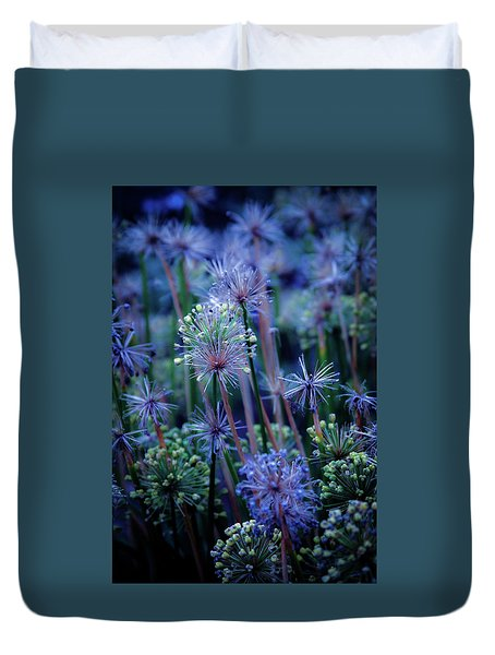 Natural Fireworks 4791 H_2 Duvet Cover