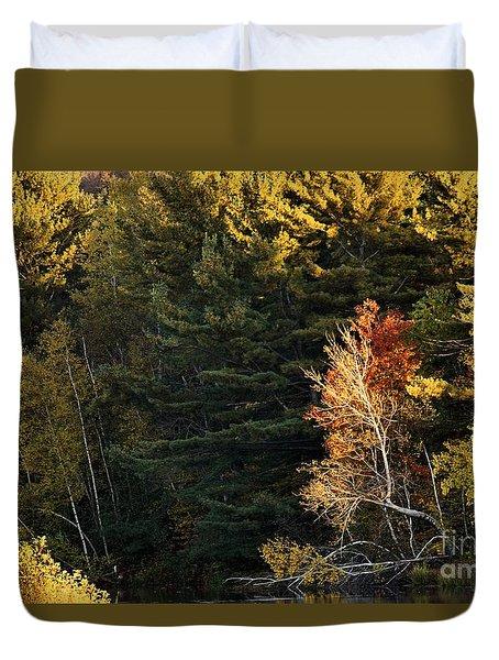 natural Framing Duvet Cover by Aimelle