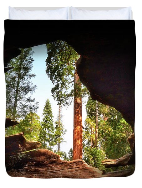 Natural Window Duvet Cover