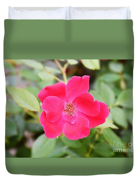 Duvet Cover featuring the photograph Nature - Colorful Flower Gifts  by Ray Shrewsberry