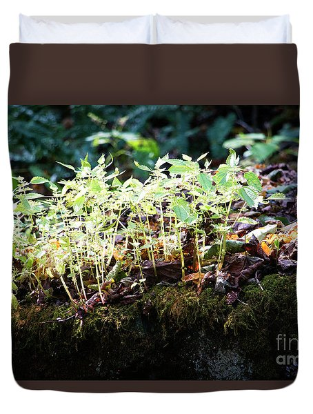 Nature Finds A Way Duvet Cover by Rebecca Davis