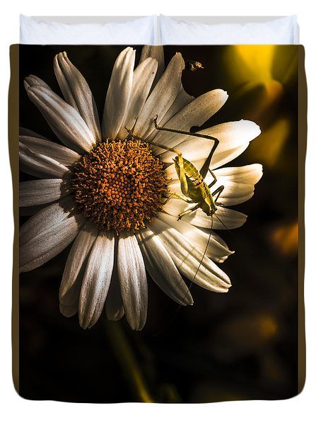 Nature Fine Art Summer Flower With Insect Duvet Cover