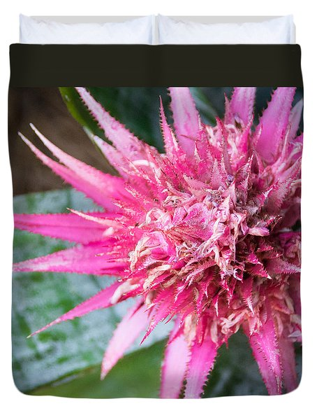 Nature's Art Duvet Cover