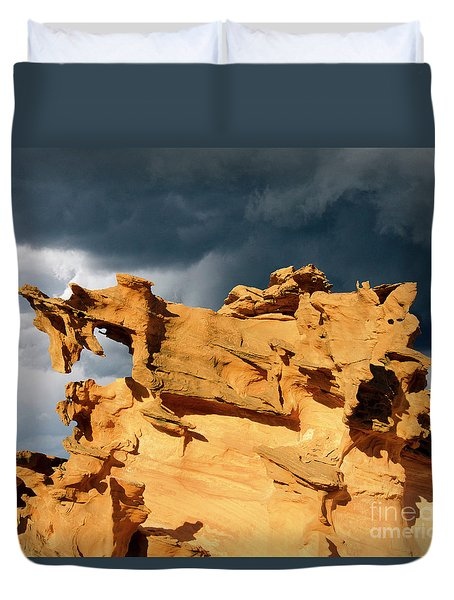 Duvet Cover featuring the photograph Nature's Artistry Nevada 3 by Bob Christopher