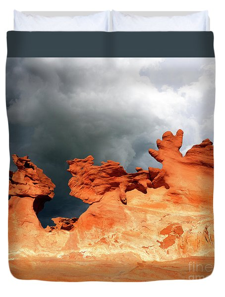 Nature's Artistry Nevada Duvet Cover by Bob Christopher