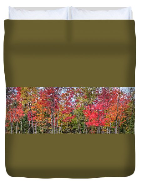 Duvet Cover featuring the photograph Natures Autumn Palette by David Patterson