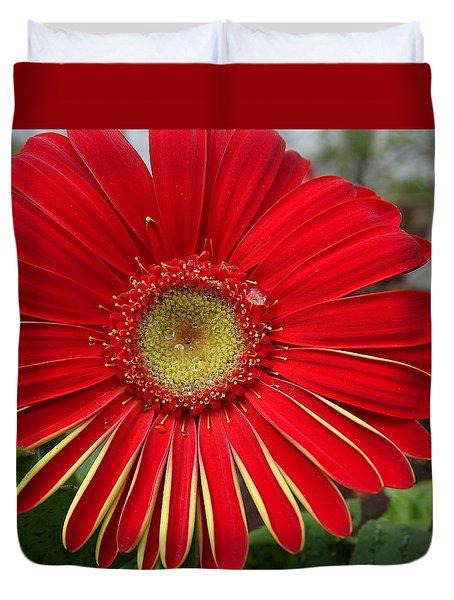 Natures Best Duvet Cover