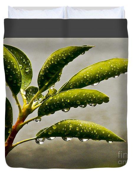 Early Morning Raindrops Duvet Cover by Carol F Austin