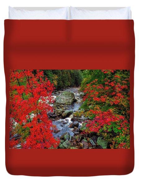 Natures Frame Duvet Cover