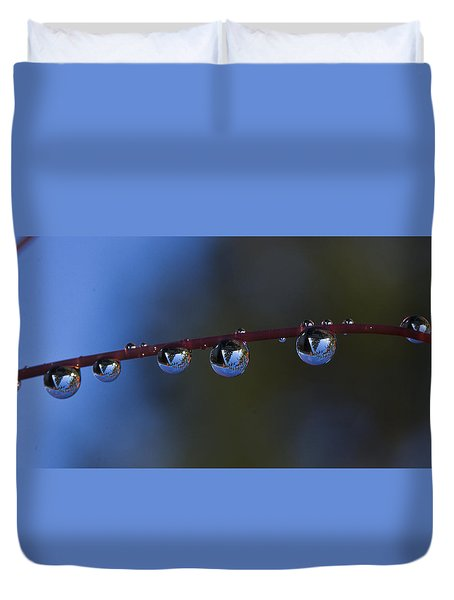 Nature's Orbs Duvet Cover