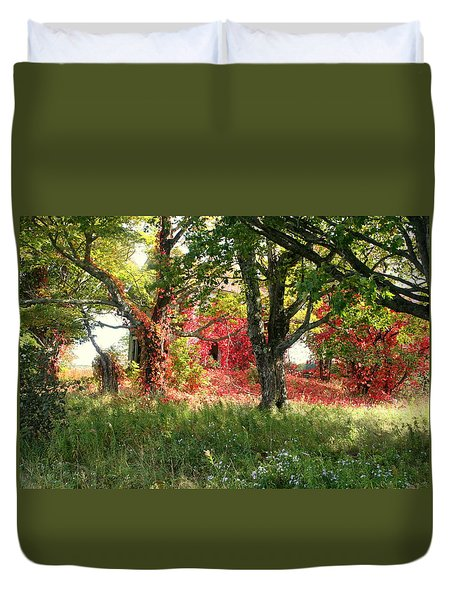 Natures Paintbrush Duvet Cover