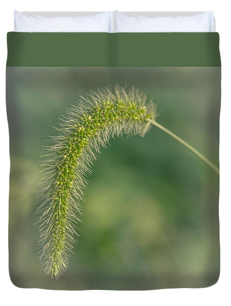 Natures  Tail Duvet Cover