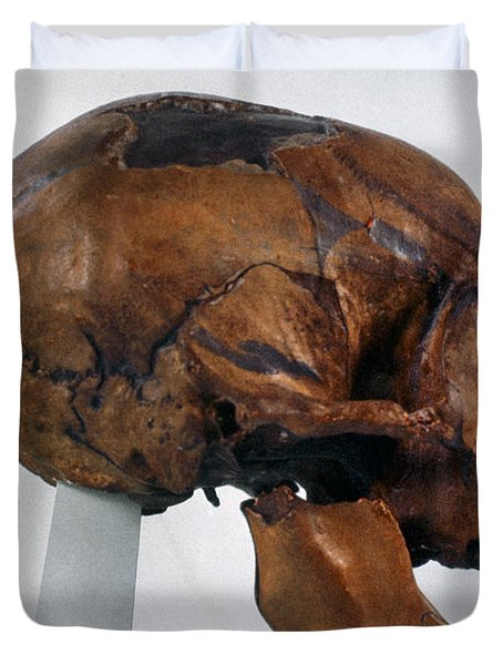 Neanderthal Skull Duvet Cover