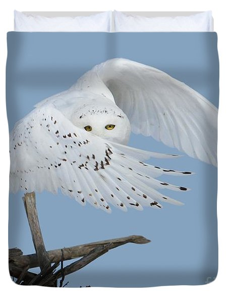 Peek - A - Boo Duvet Cover by Heather King