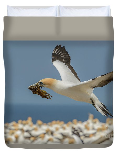 Nest Building Duvet Cover