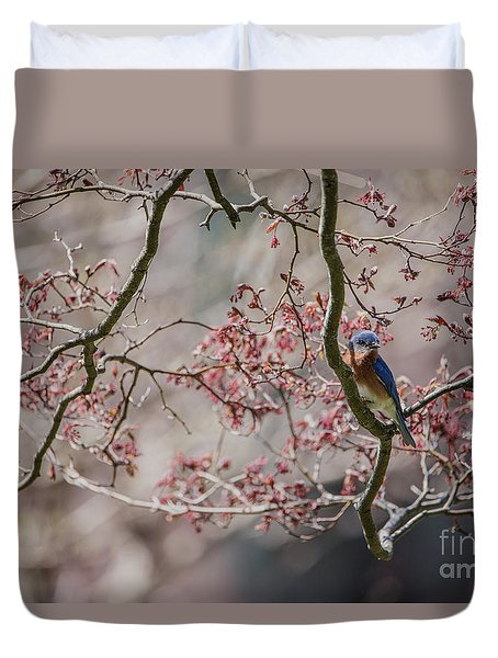 Nest Scouting Duvet Cover by Judy Wolinsky