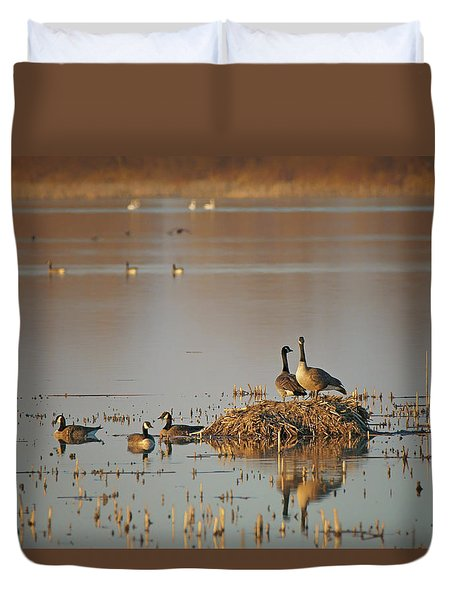 Duvet Cover featuring the photograph Nesting - Canada Geese by Nikolyn McDonald
