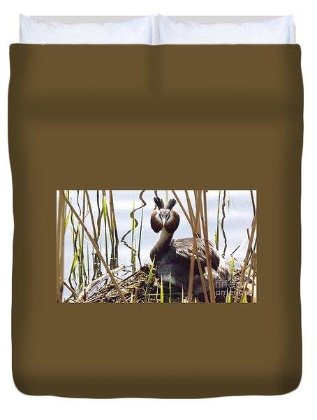 Nesting Grebe Duvet Cover