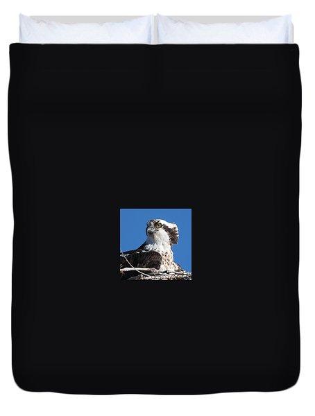 Nesting Osprey Duvet Cover