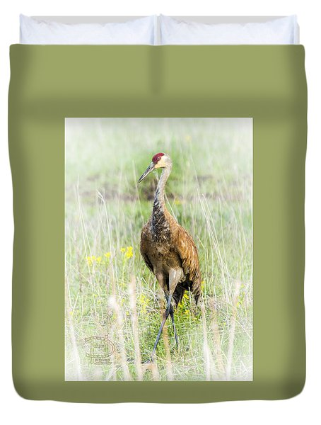Duvet Cover featuring the photograph Nesting Sandhill Crane by Daniel Hebard