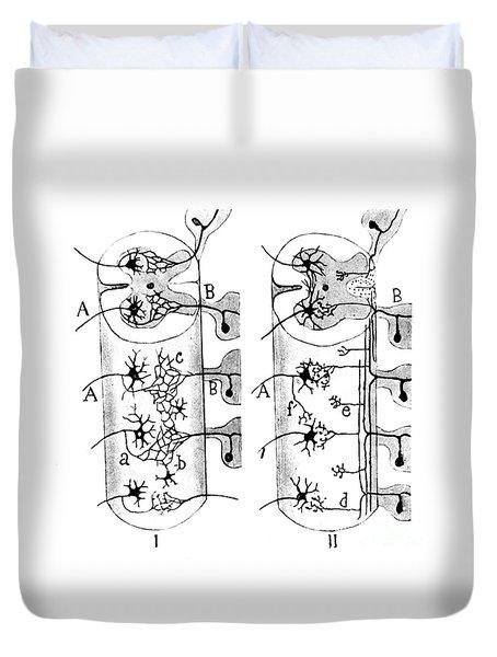 Neuroglia Cells Illustrated By Cajal Duvet Cover