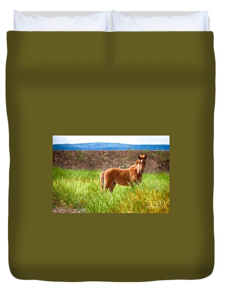 Duvet Cover featuring the photograph Nevada Mustang Baby - Spring 2016 by Vinnie Oakes