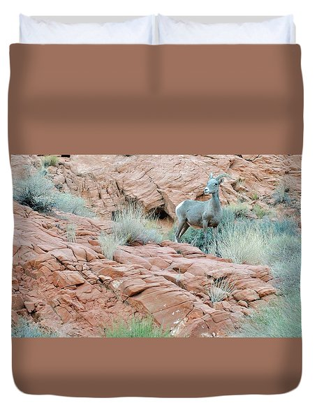 Nevada Rocks 31c Duvet Cover