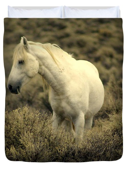 Nevada Wild Horses 4 Duvet Cover by Marty Koch
