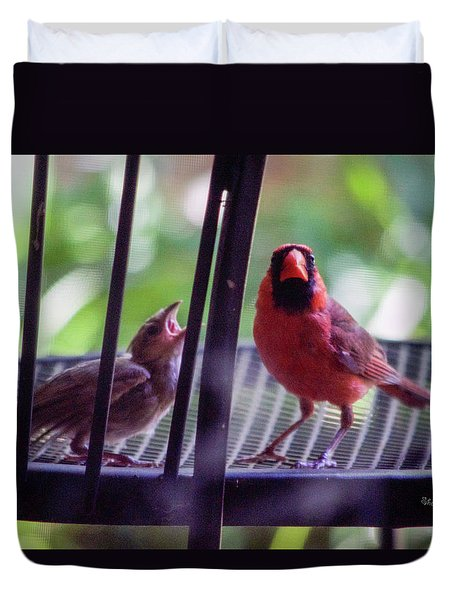 New Baby Cardinal Duvet Cover