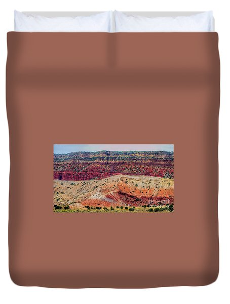 New Mexico Hillside Duvet Cover by Gina Savage