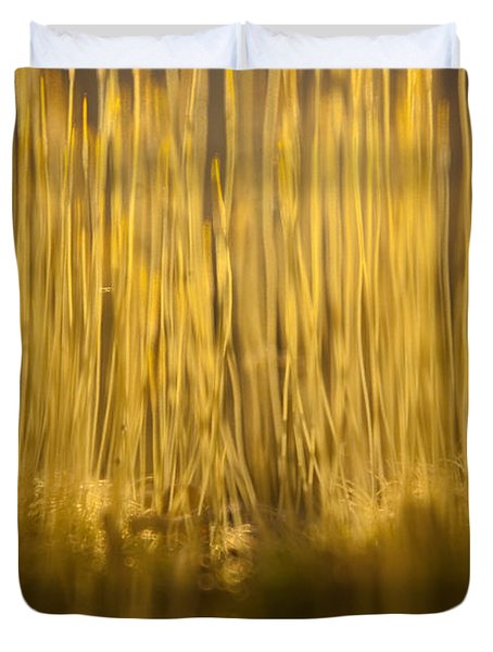 New Terra Firma Generating Duvet Cover by Douglas Barnett