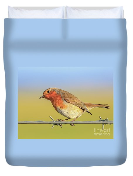 New Year Robin Duvet Cover by Roy McPeak