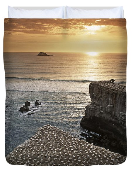 Duvet Cover featuring the photograph new zealand gannet colony at muriwai beach ,gannet fly from Muri by Juergen Held