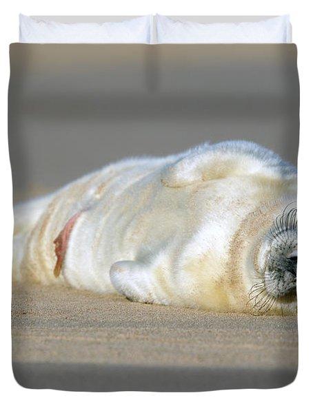Newborn Baby Atlantic Grey Seal Sleeping Duvet Cover