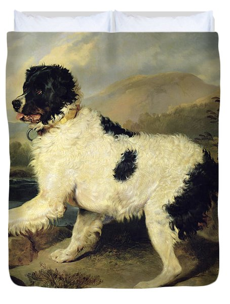 Newfoundland Dog Called Lion Duvet Cover by Sir Edwin Landseer