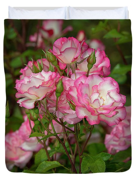 Nicole Roses 1 Duvet Cover