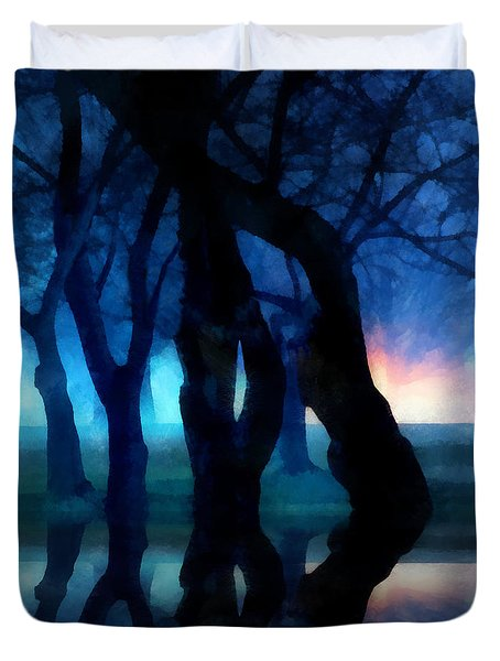 Night Fog In A City Park Duvet Cover by Francesa Miller