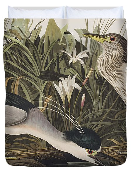 Night Heron Or Qua Bird Duvet Cover