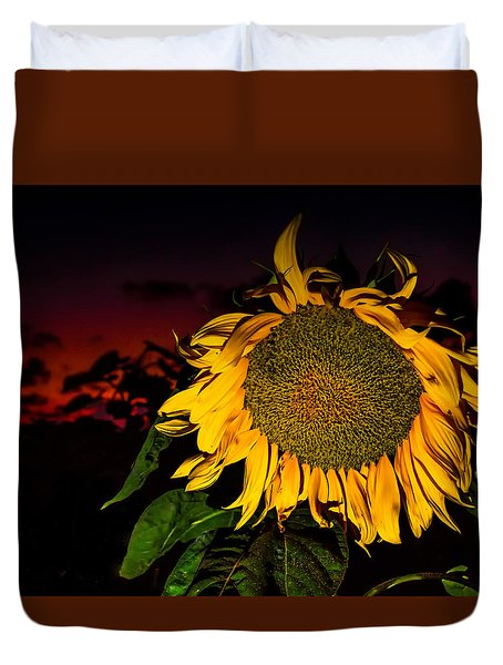 Night Sunflower Duvet Cover