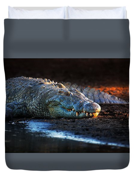 Nile Crocodile On Riverbank-1 Duvet Cover by Johan Swanepoel