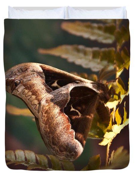 Nocturnal Moth Duvet Cover
