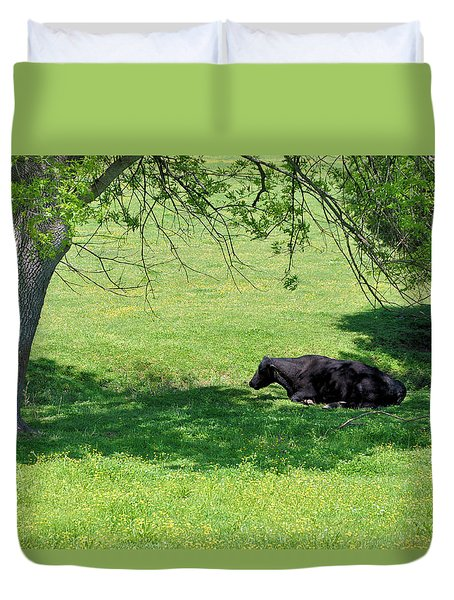 Noon Siesta Duvet Cover by Jan Amiss Photography