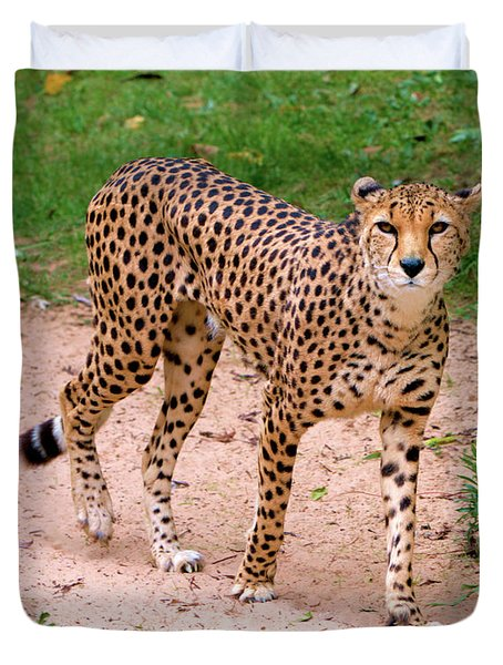 North African Cheetah Duvet Cover