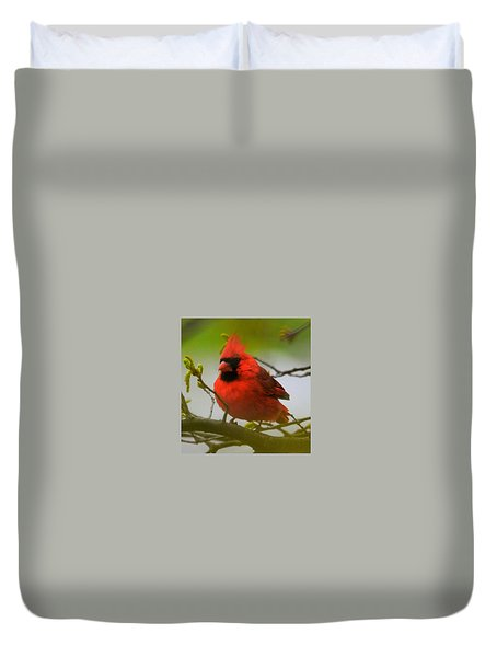 North Carolina Cardinal Duvet Cover