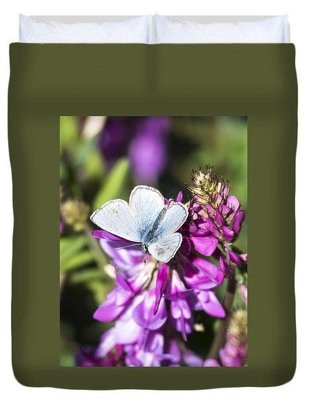 Northern Blue Butterfly Duvet Cover
