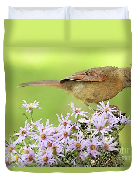 Northern Cardinal Among Purple Flowers Duvet Cover