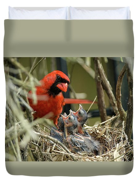 Duvet Cover featuring the photograph Northern Cardinal Day 8 by Everet Regal